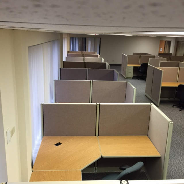 Cubicles along wall